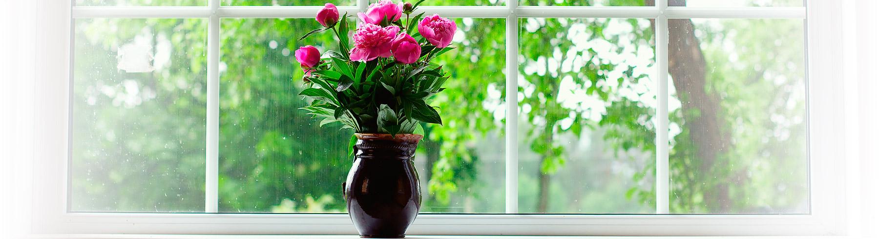 I fönstret